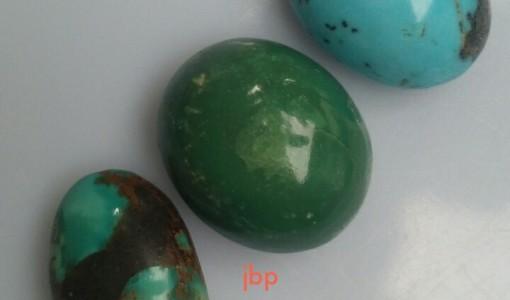 pirus persi hijau polos asli
